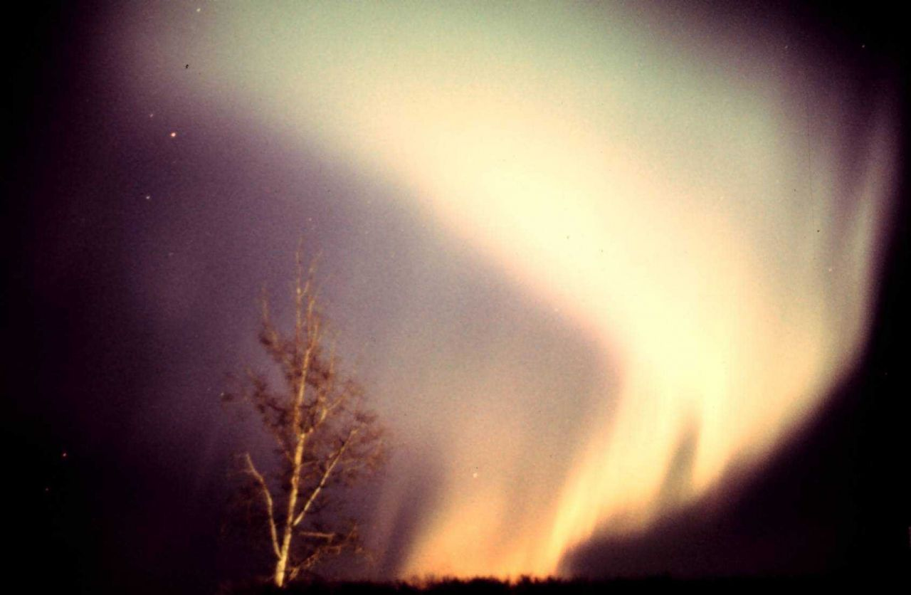 Aurora borealis in vicinity of Anchorage Photo