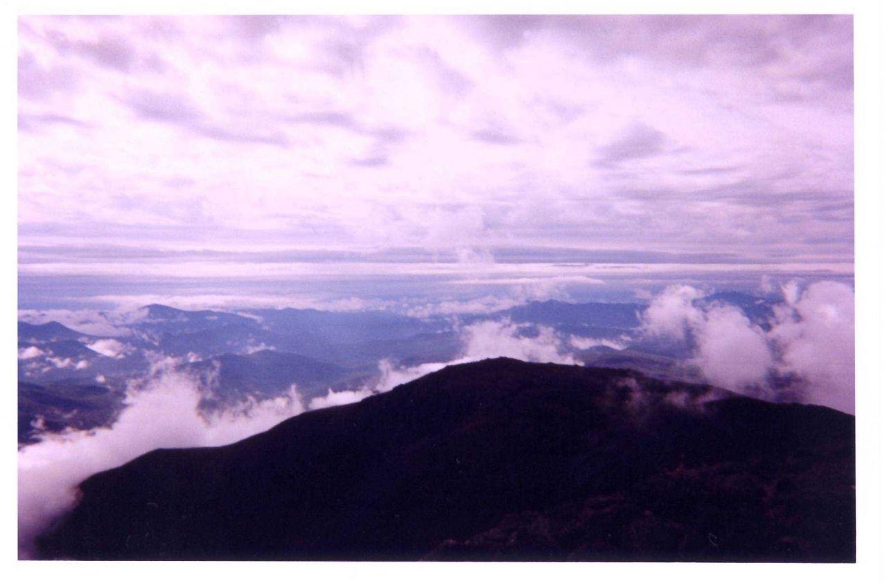 Fog below, cloud above. Photo