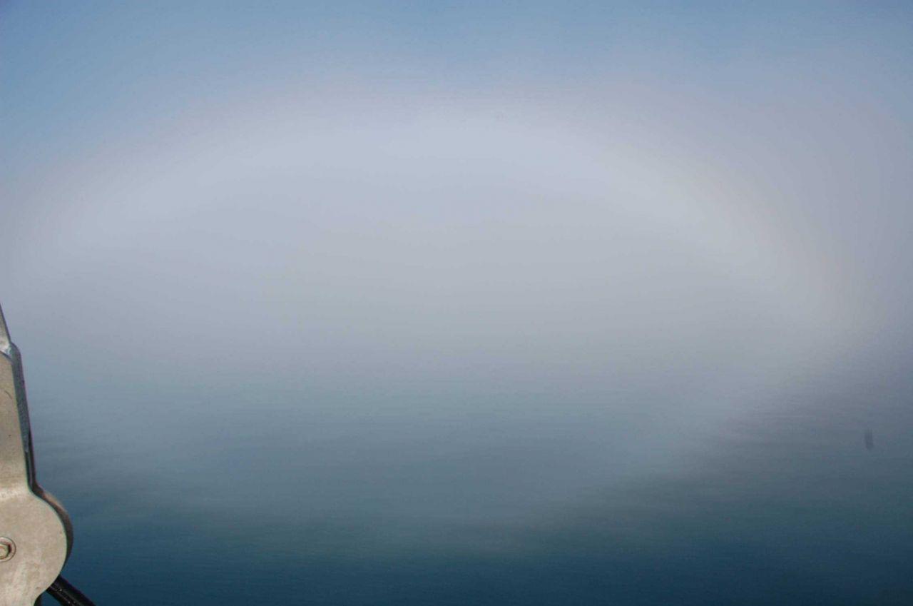 Fogbow at Glacier Bay. Photo