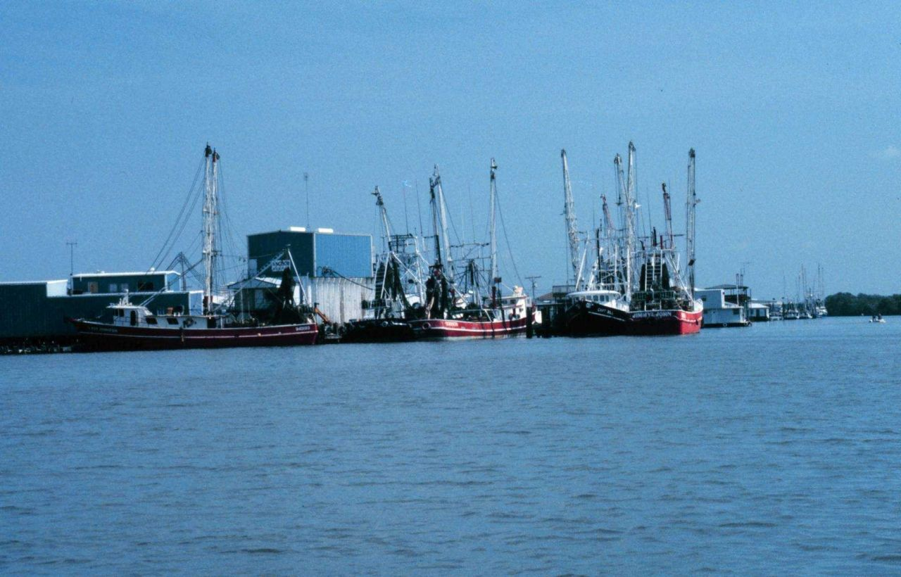 Fishing boats at nearby Port Forchon, the newly created wetlands will help to support the numerous fishery resources found in this area. Photo