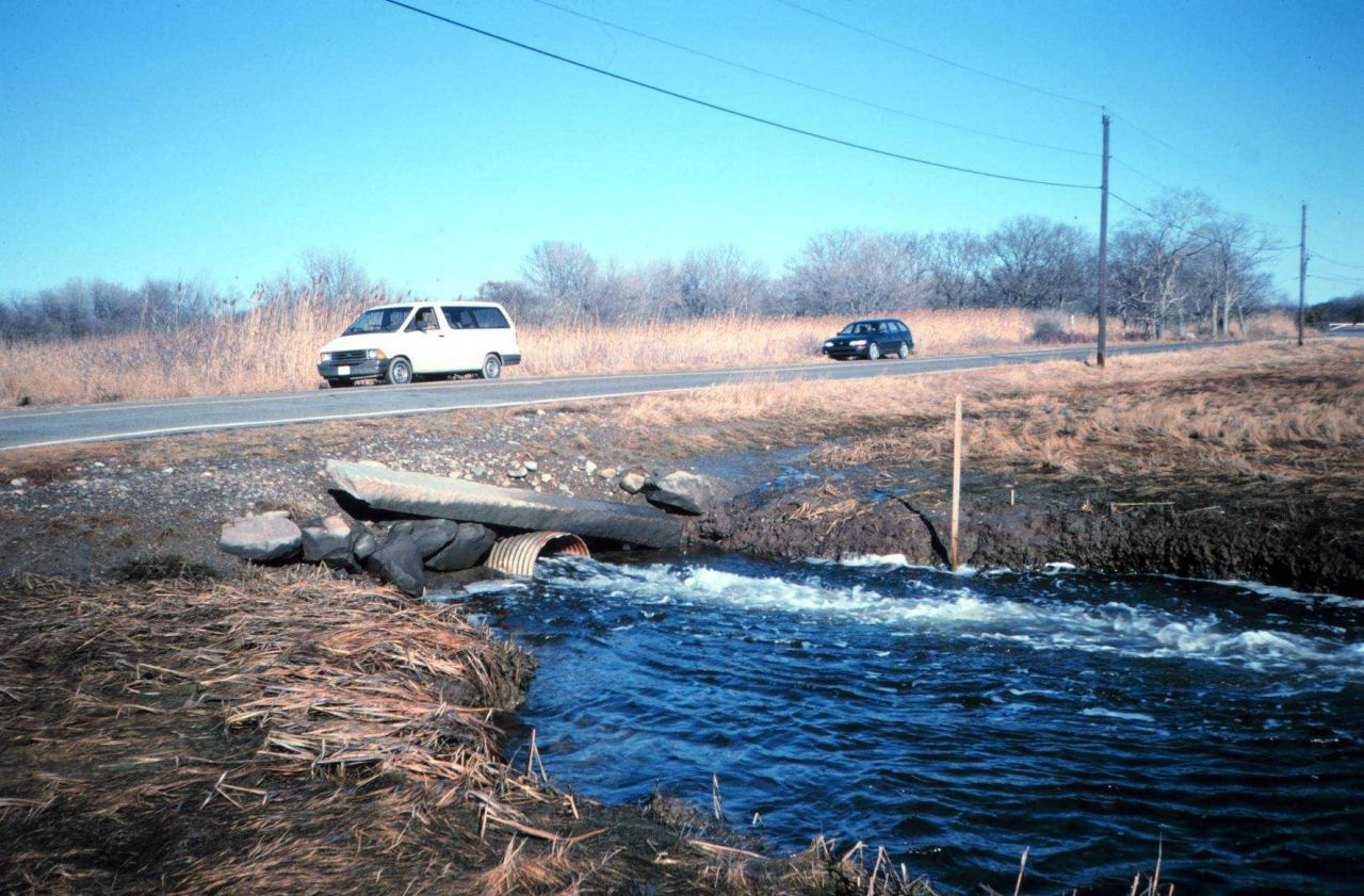 Looking upstream at the original culvert Photo