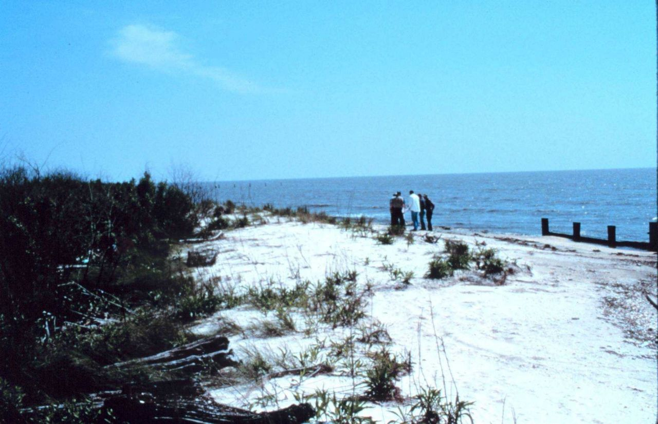 Area 2; southeast view of the bulkhead, beach and dunes. Photo