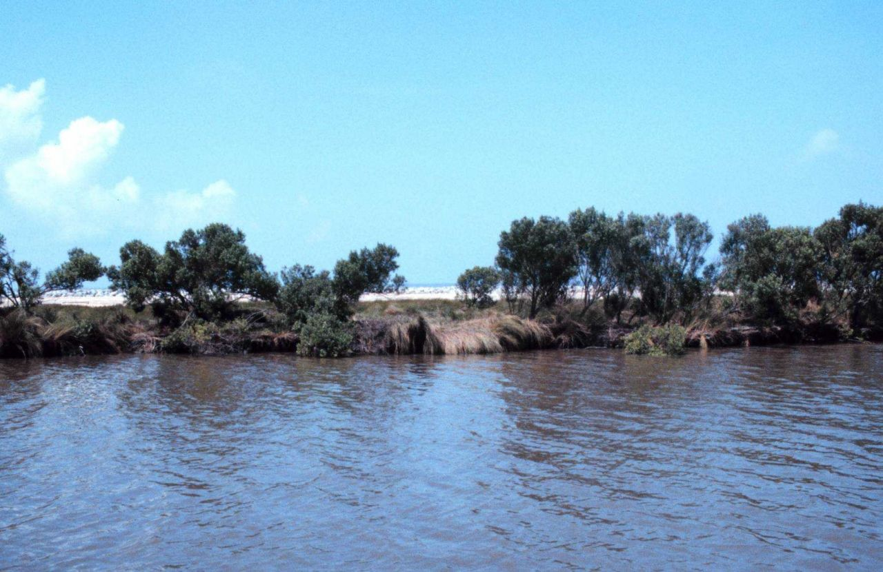 A view from Mobile Canal toward the Gulf of Mexico with the protective rock in the background on the beach. Photo