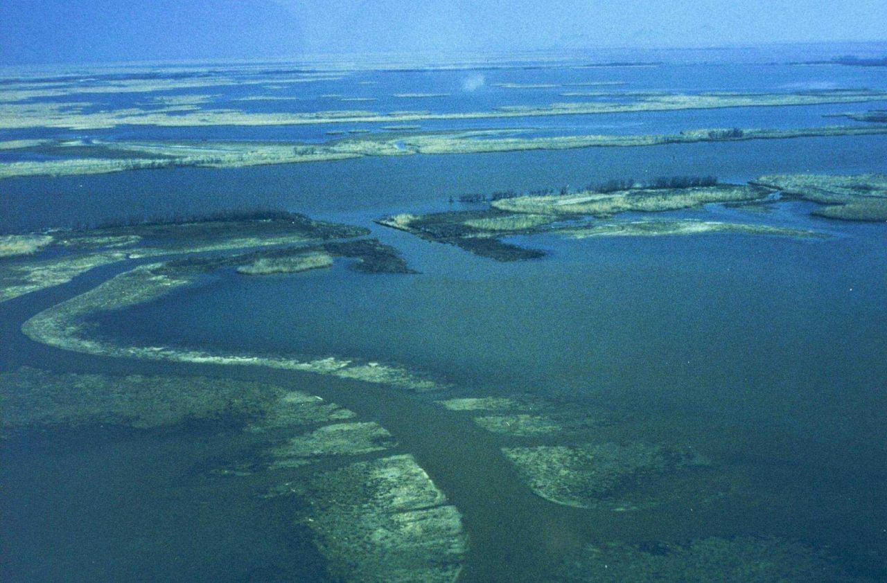 The third in a series of aerial images of Dixon Bay. Photo