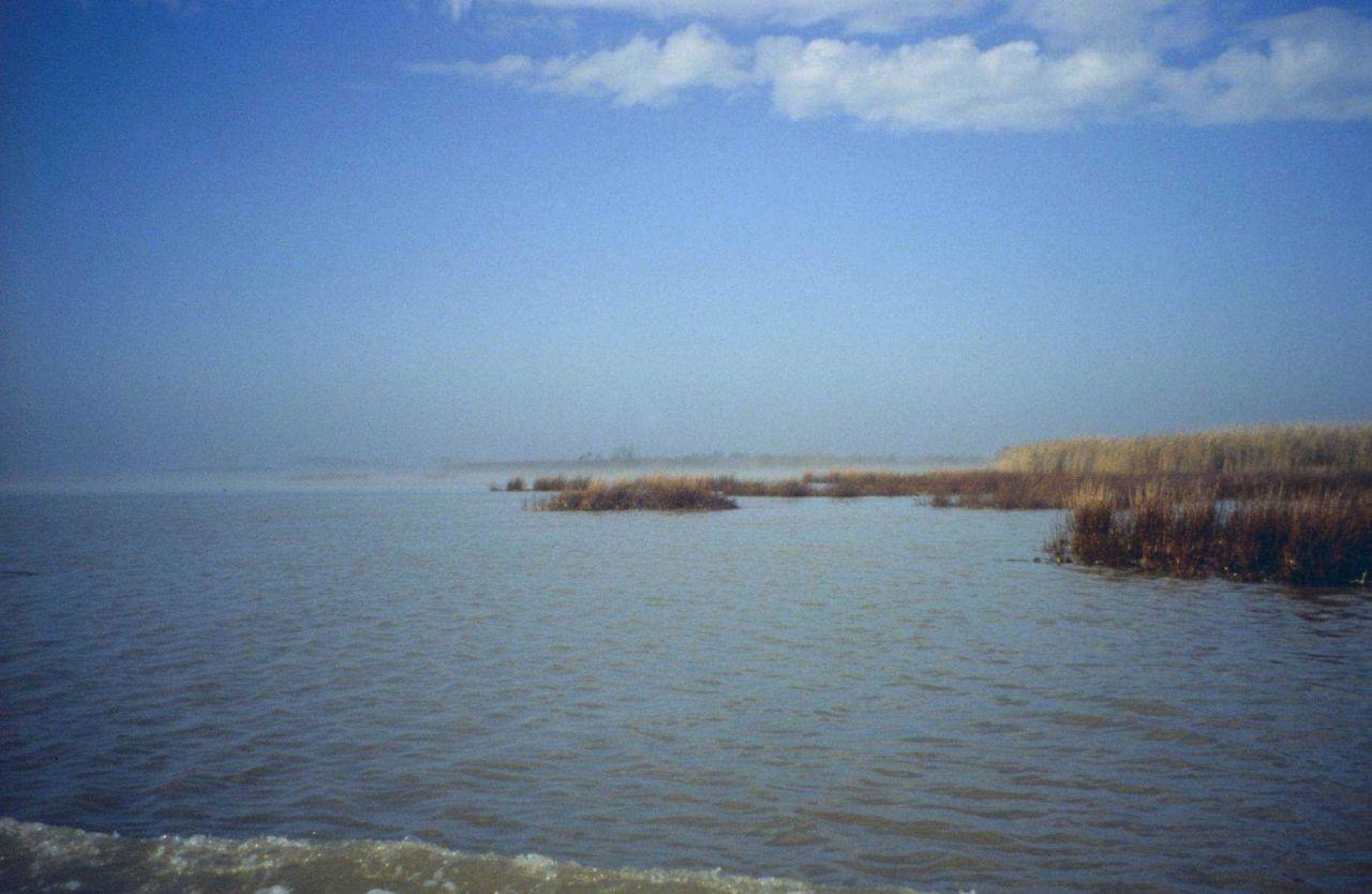 Dixon Bay; the open bay Photo