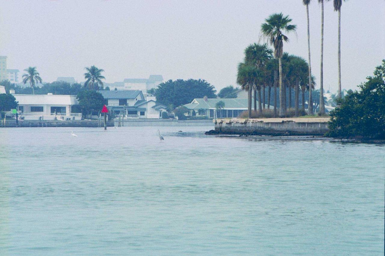 The surrounding shoreline and homes on Tampa Bay. Photo