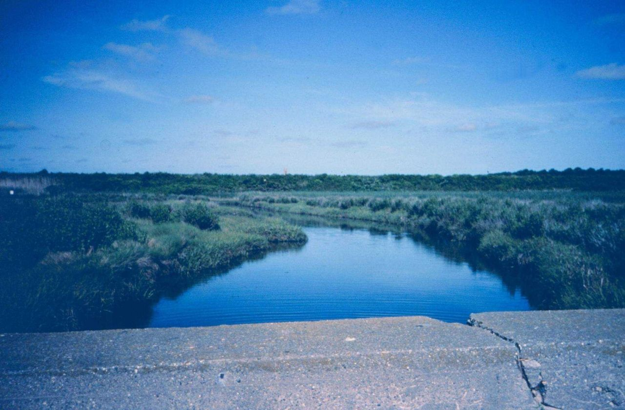 The main tidal creek of Maidford River that enters Sachuest Marsh near Third Beach. Photo