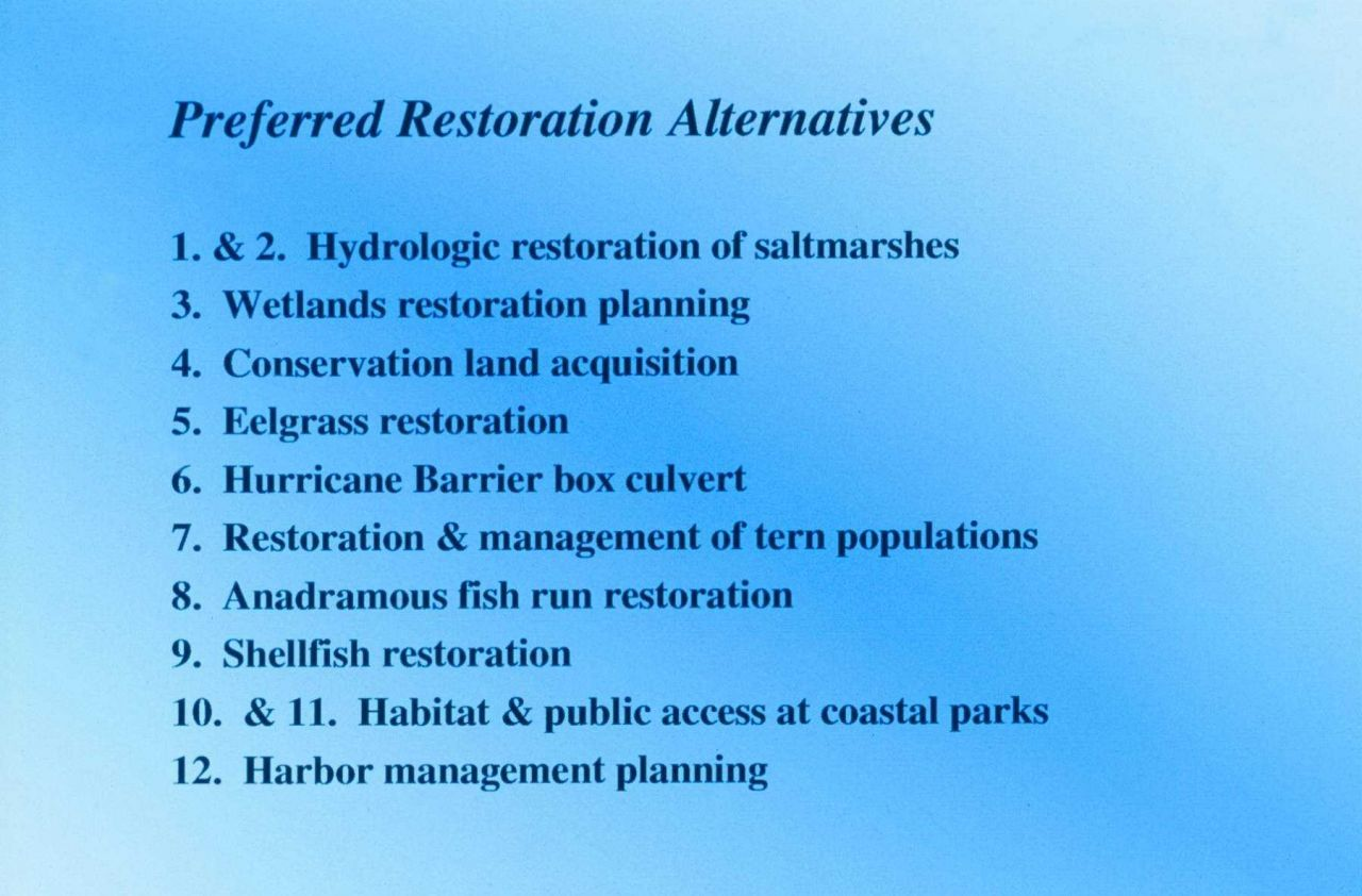 preferred restoration alternatives for the New Bedford Harbor Superfund site. Photo