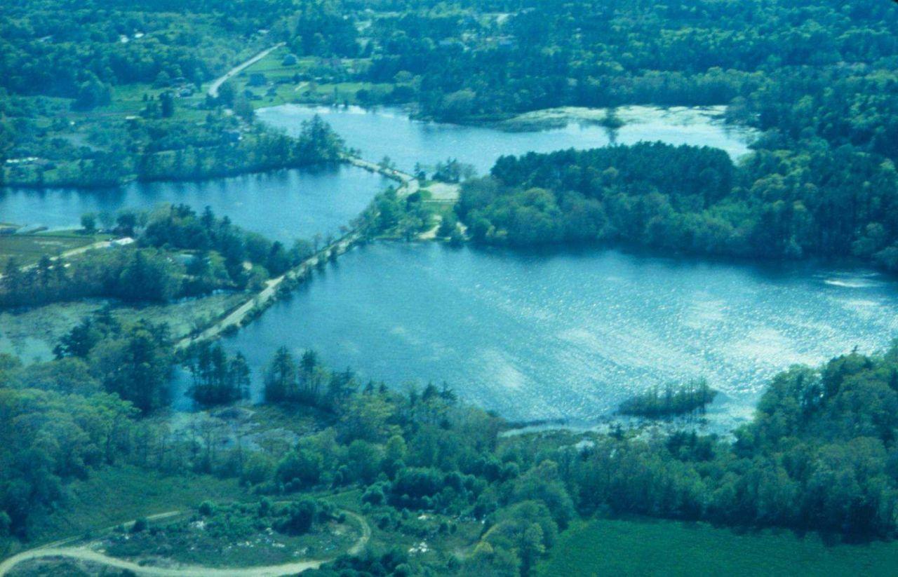 Aerial view of Marsh Photo