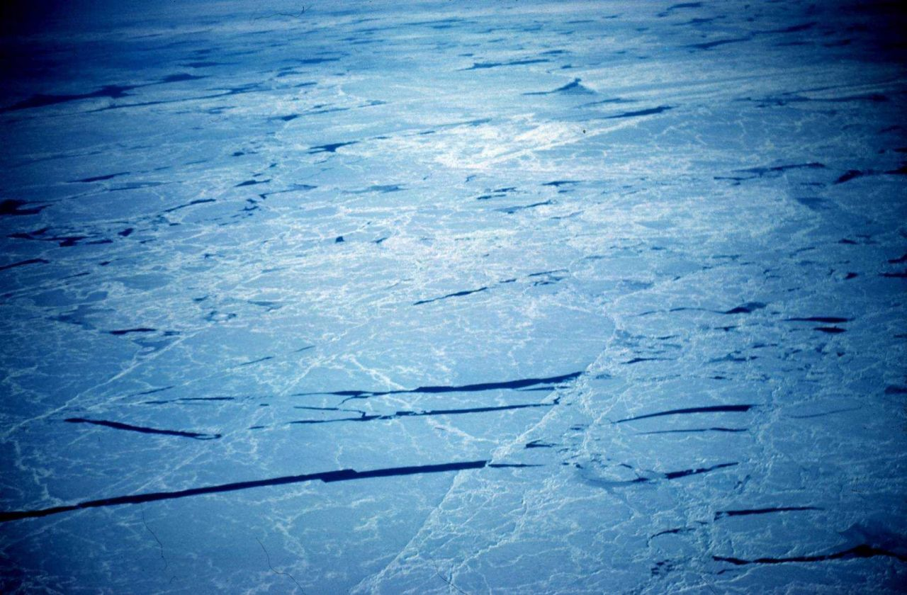 Cracks in sea ice as seen from the air Photo