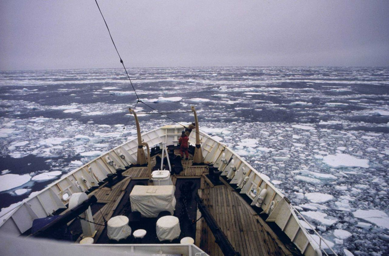 SURVEYOR pushes through sea ice during the FOCI project. Photo