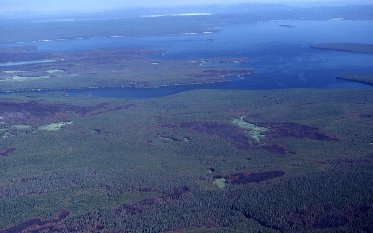 Aerial view of burn pattern-looking north toward Flat Mountain Arm - Fire Photo