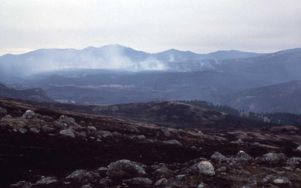 Smoldering fire & smoke, Buffalo Plateau, Coyote Creek, North range Photo