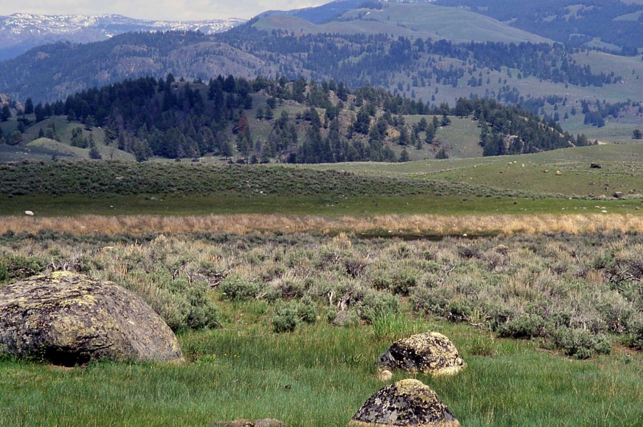 Ground moraines & glacial erratics near Junction Butte - Geology - Glacial Photo