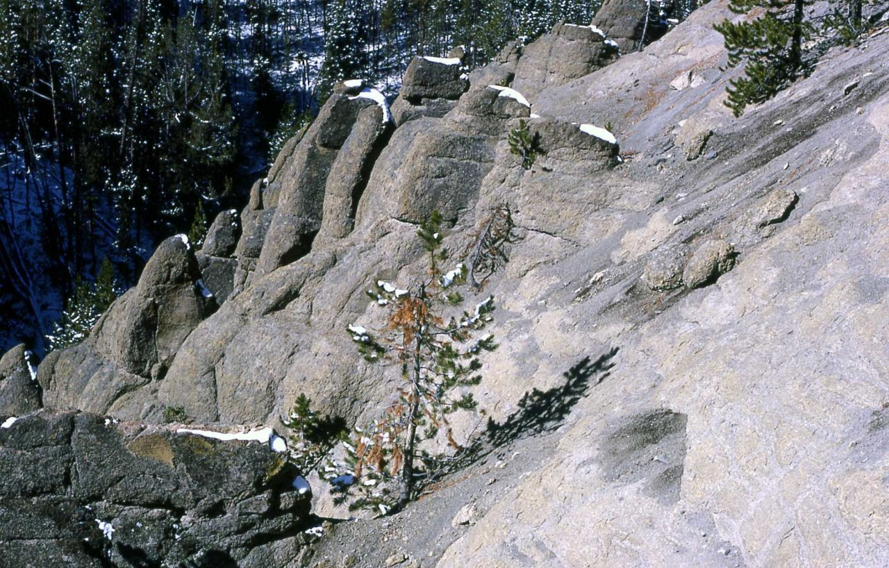 Weathering of Yellowstone tuff at Virginia Cascade Photo