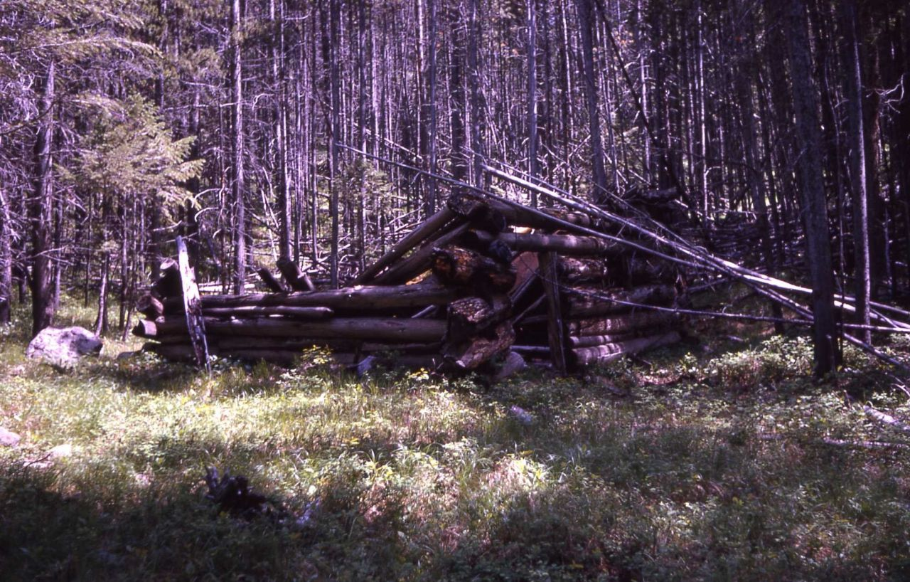 Cabin (poacher's?) on north slope of Bunsen Peak, discovered by DeSanto, Naturalist at Norris during 60's Photo