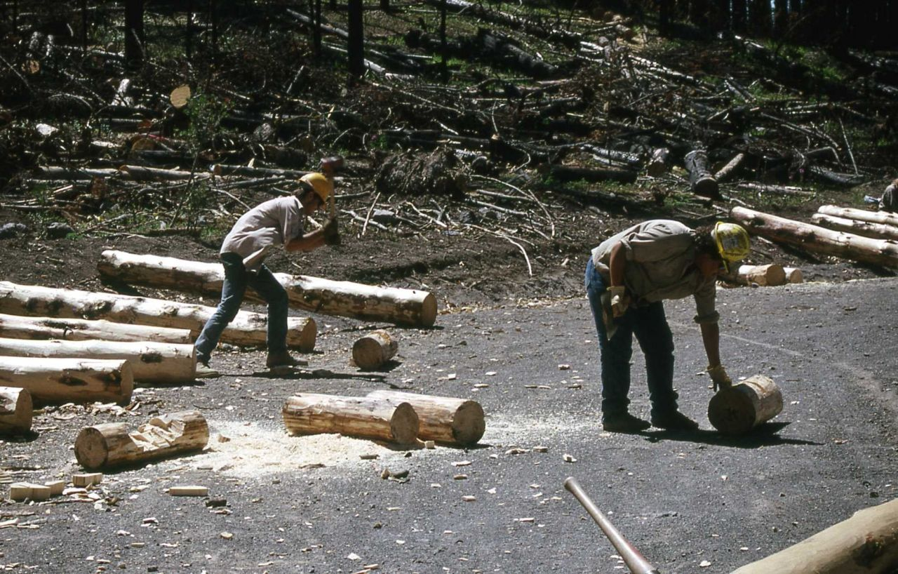 Youth Conservation Corp workers making bumper logs (chopping in grooves) Photo