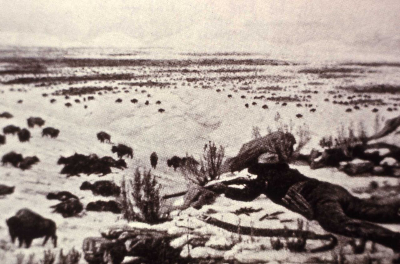 Copy of photo of man lying down shooting bison Photo