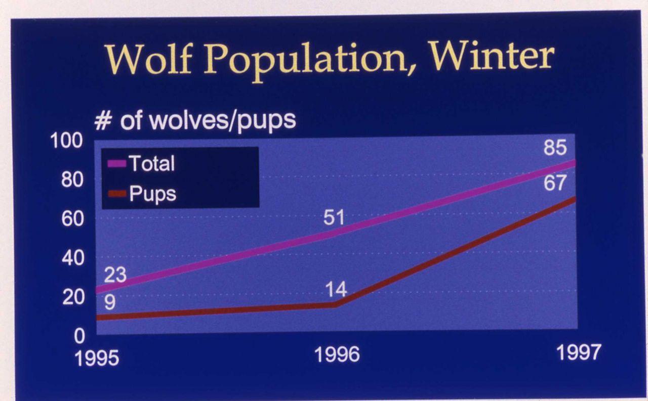 Winter wolf pupulation map Photo