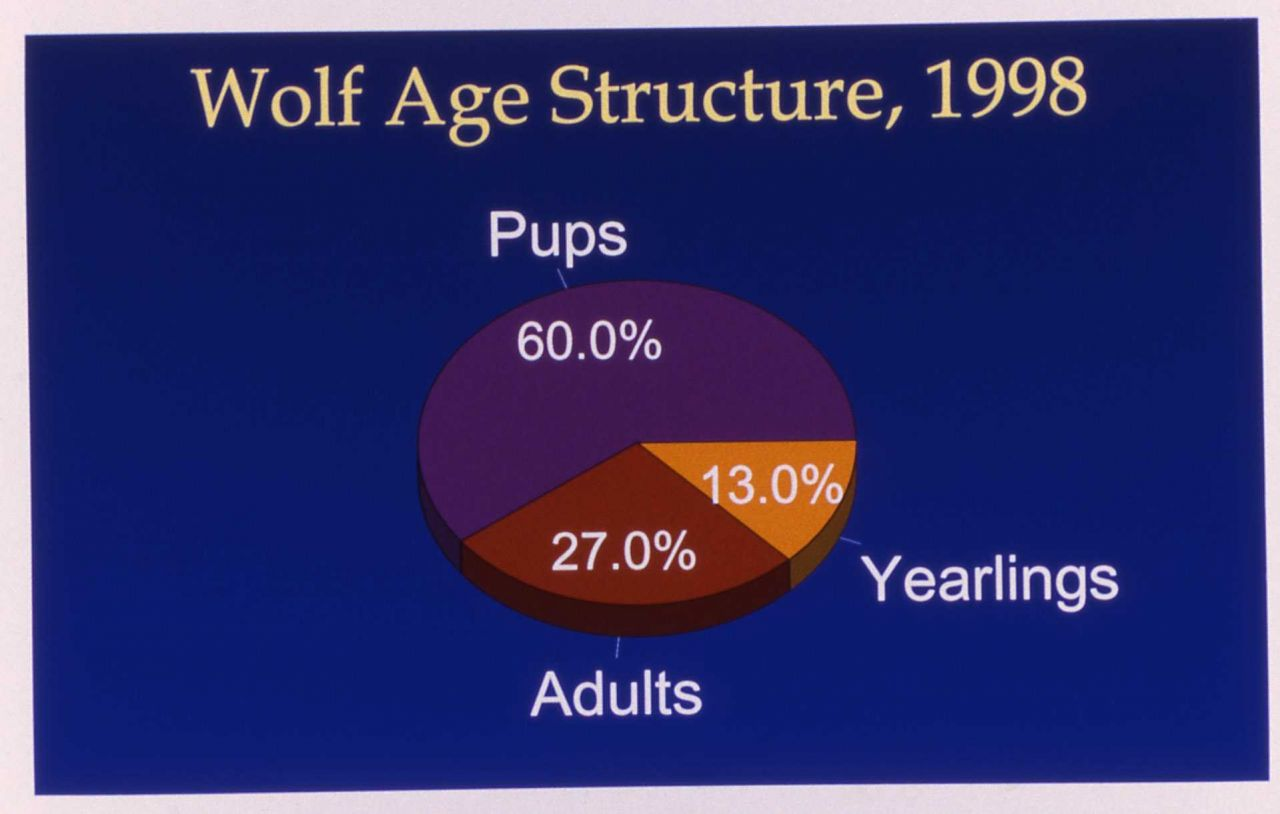 Map of wolf age structure Photo