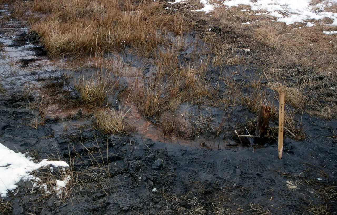 Drilling rig tracks & test hole for bridge footings on southside of Firehole River near Ojo Caliente Photo