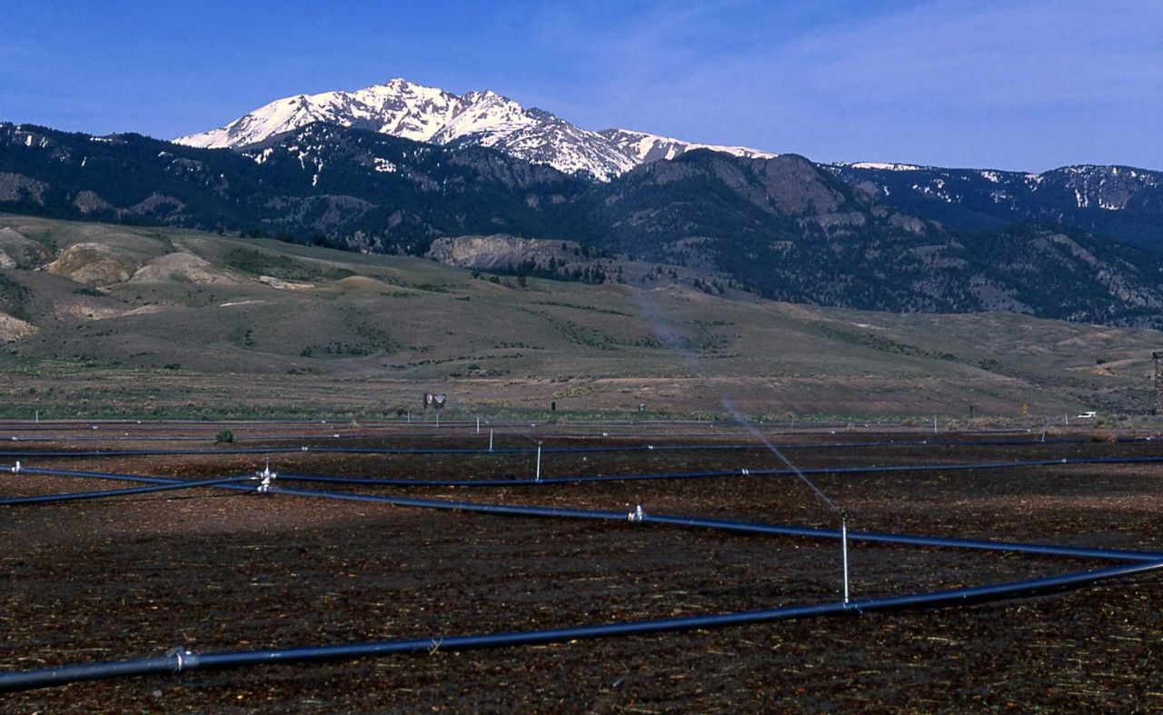 Revegetaion & irrigation in the triangle in Gardiner, Montana Photo