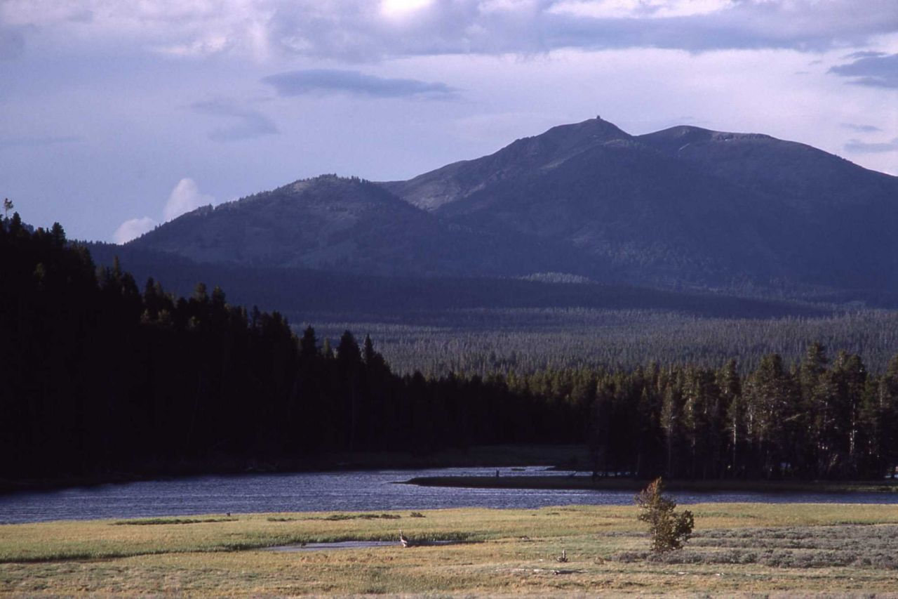 Mt Washburn & the Yellowstone River as seen from Hayden Valley Photo