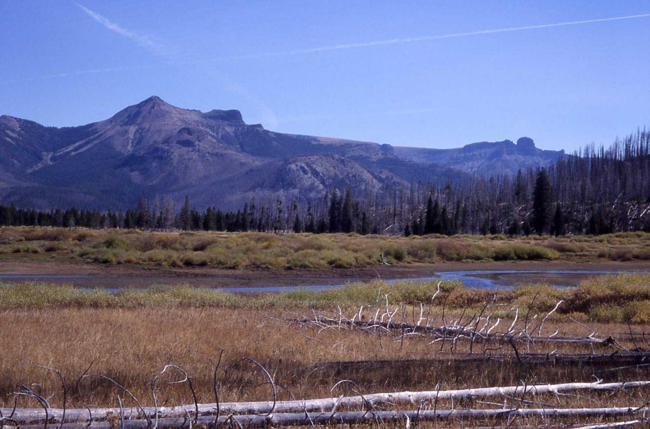 Colter Peak & Turret Mountain in Yellowstone River delta area Photo