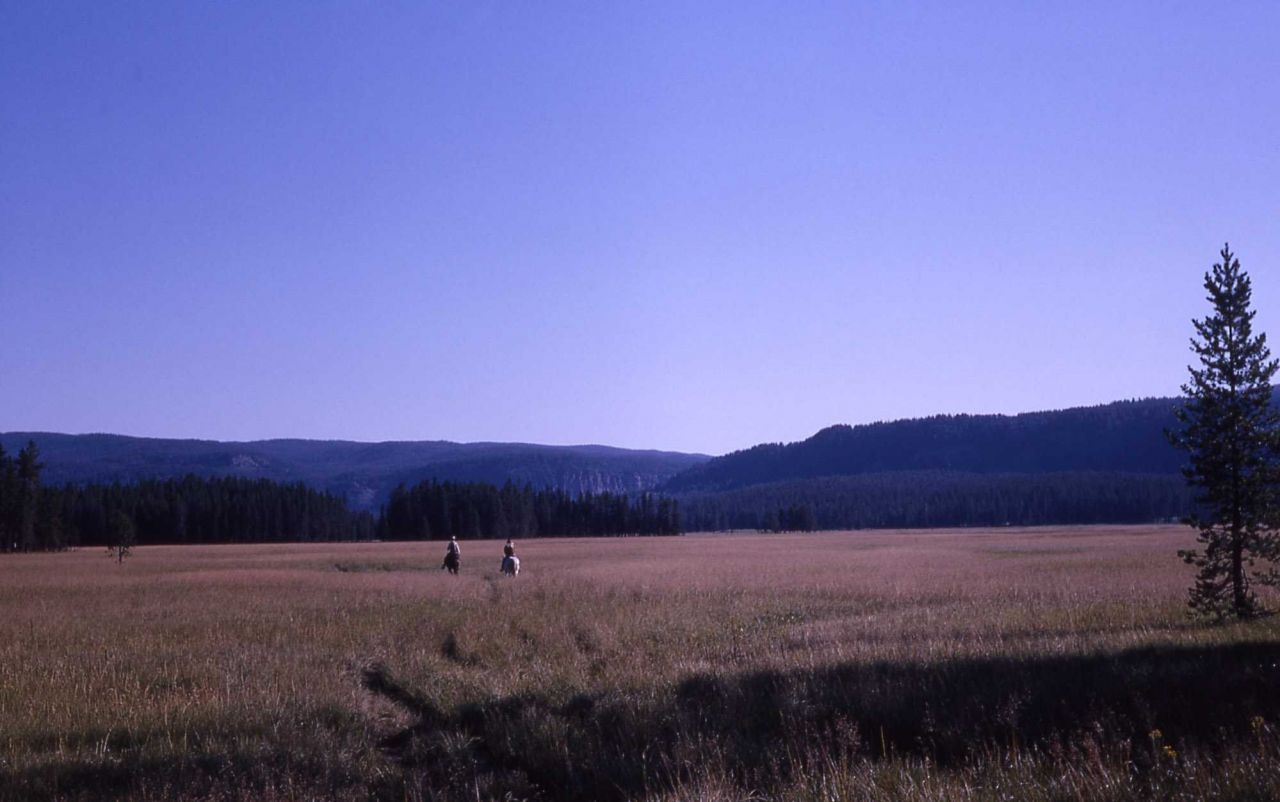 Bechler Meadow Photo