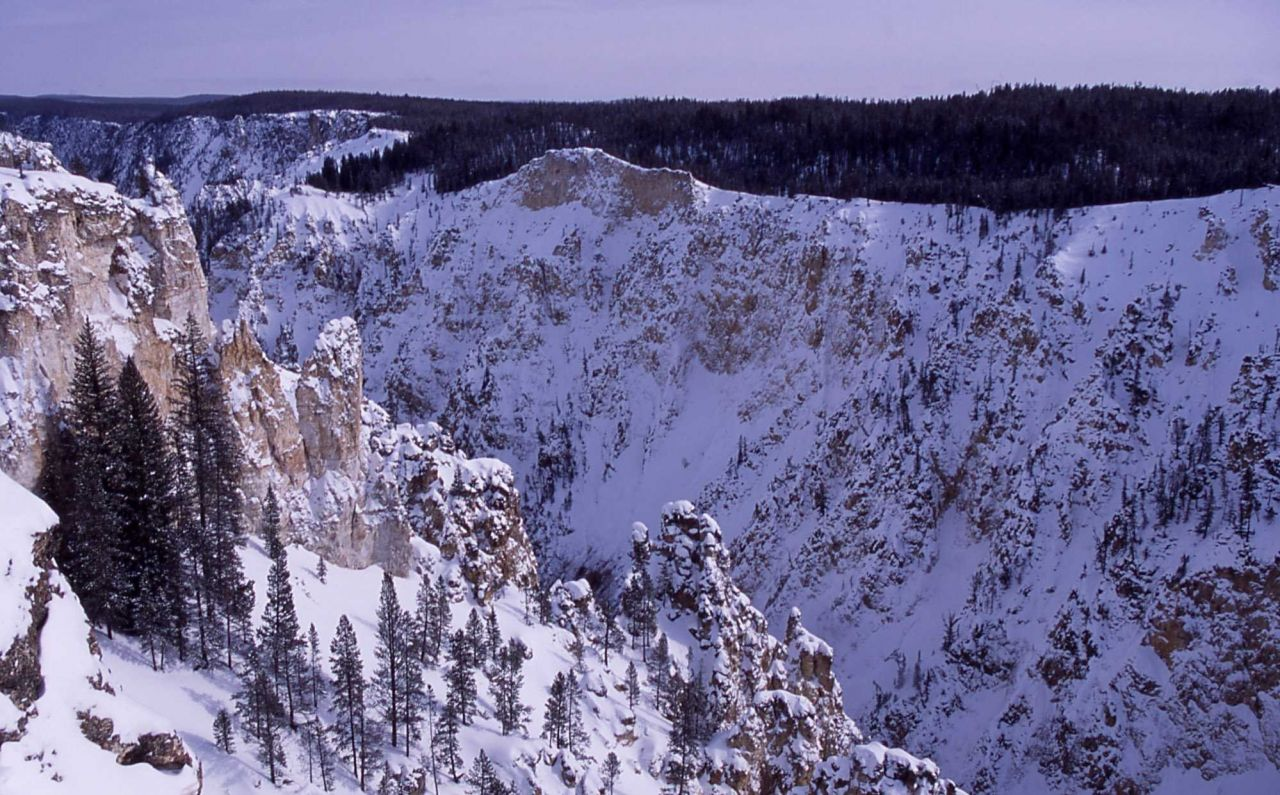 Winter view looking down the Grand Canyon of Yellowstone as seen from Lookout Point Photo