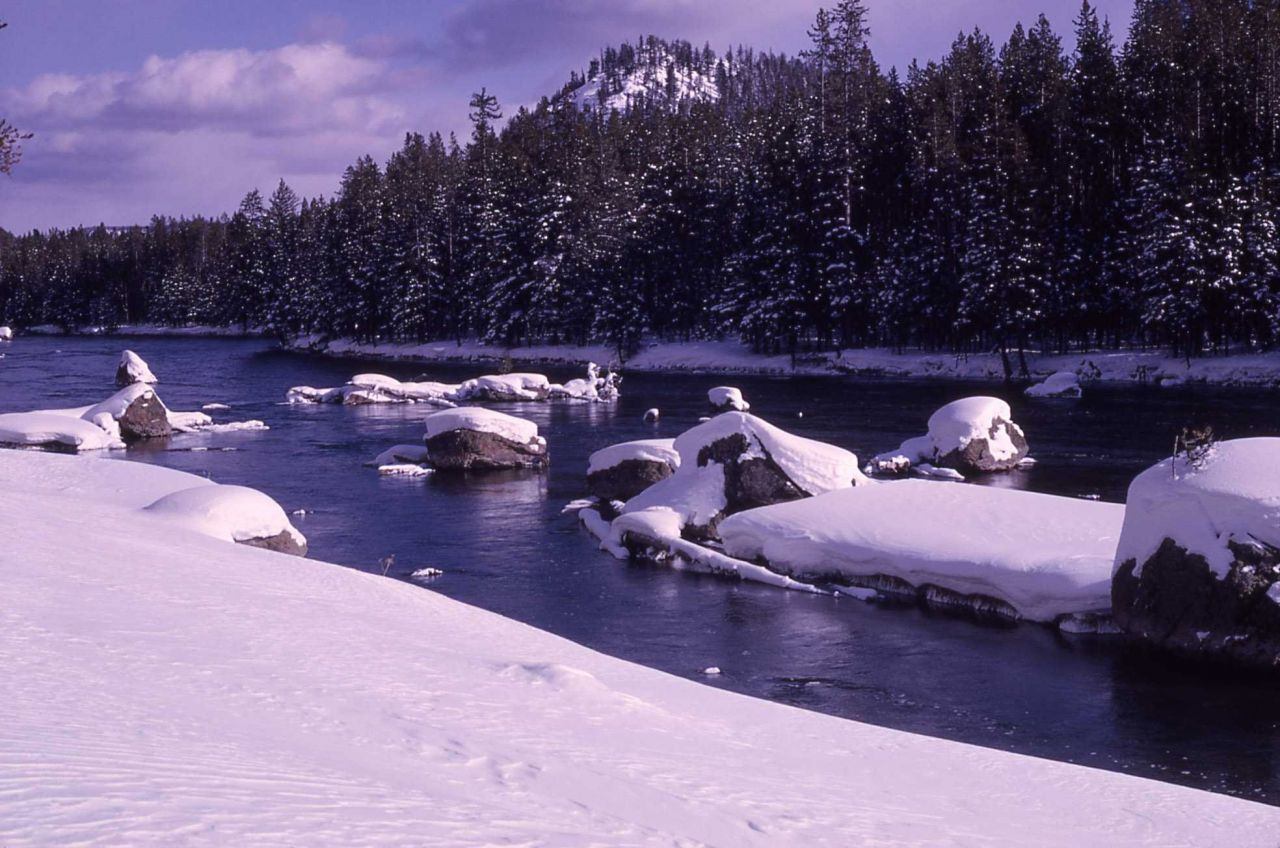 Madison River in the winter with snow Photo