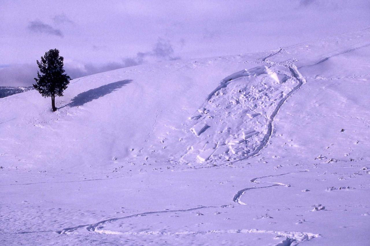 Winter snow slide near Soda Butte Photo