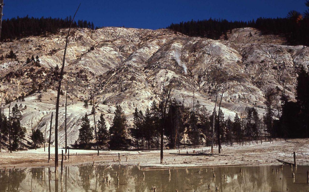 Roaring Mountain - Norris Geyser Basin Photo