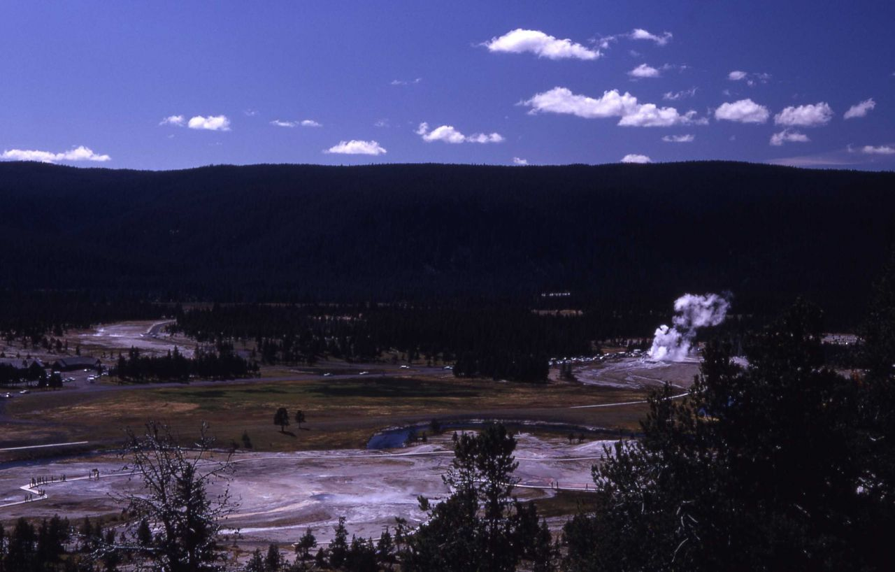 Upper Geyser Basin as seen from Observation Point Photo