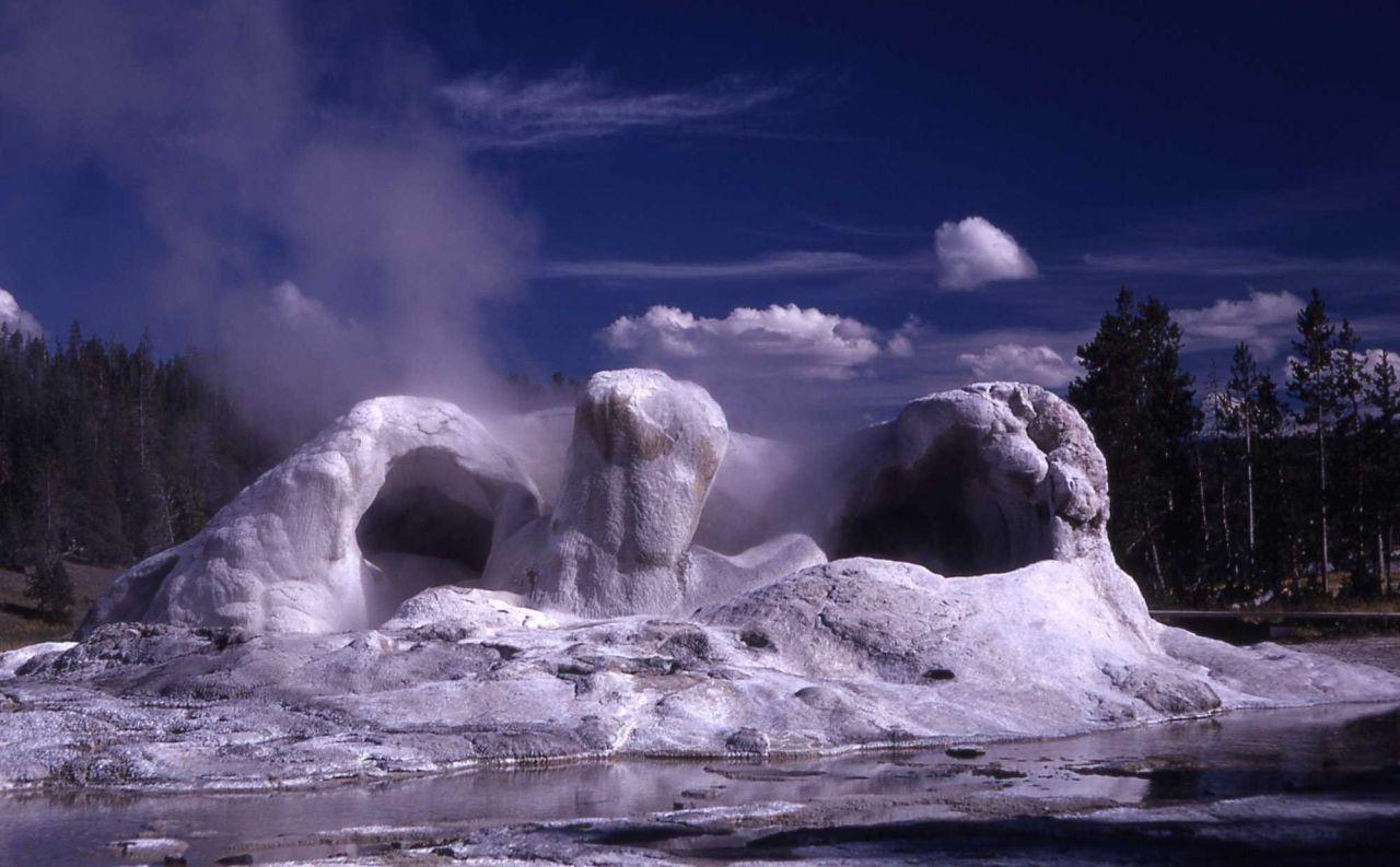 Grotto Geyser - Upper Geyser Basin Photo