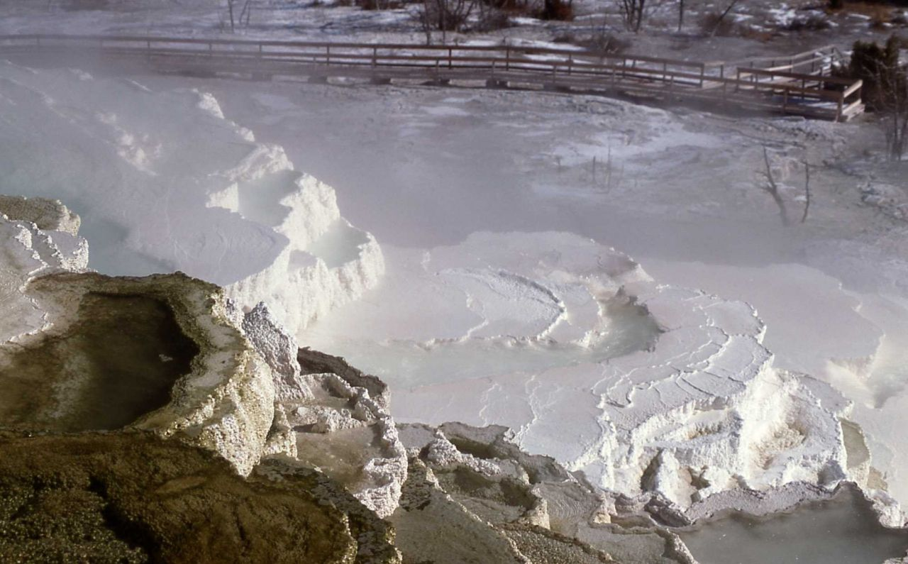 Jupiter Terrace - Mammoth Hot Springs Photo
