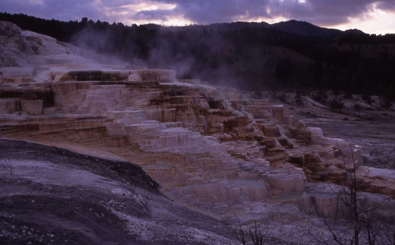 Minerva Hot Spring - Mammoth Hot Springs Photo