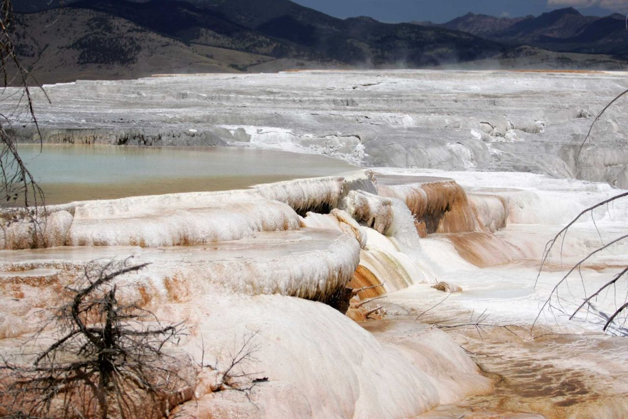 Canary Spring - Mammoth Hot Springs Photo