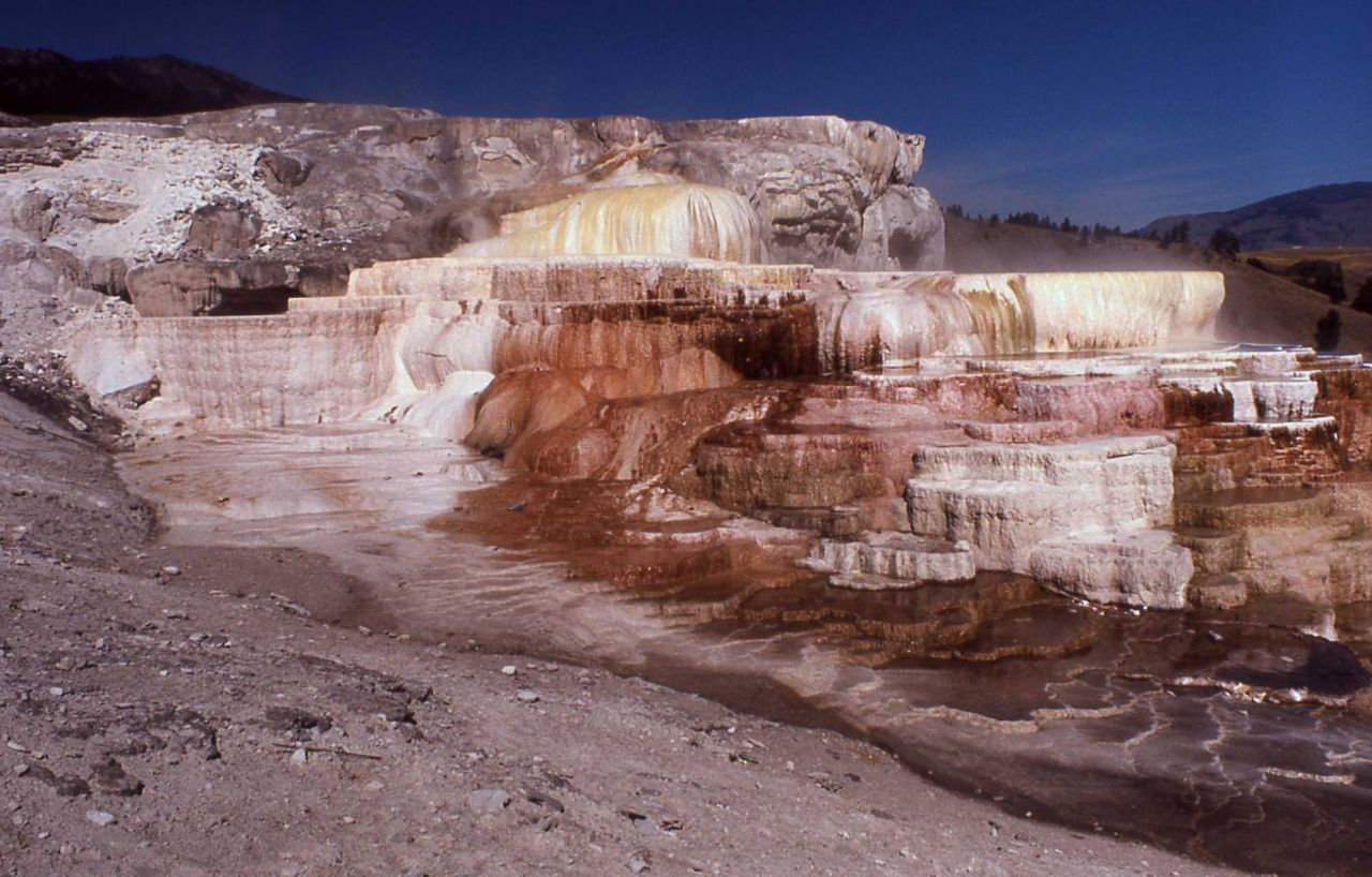 Minerva Terrace & Spring - Mammoth Hot Springs Photo