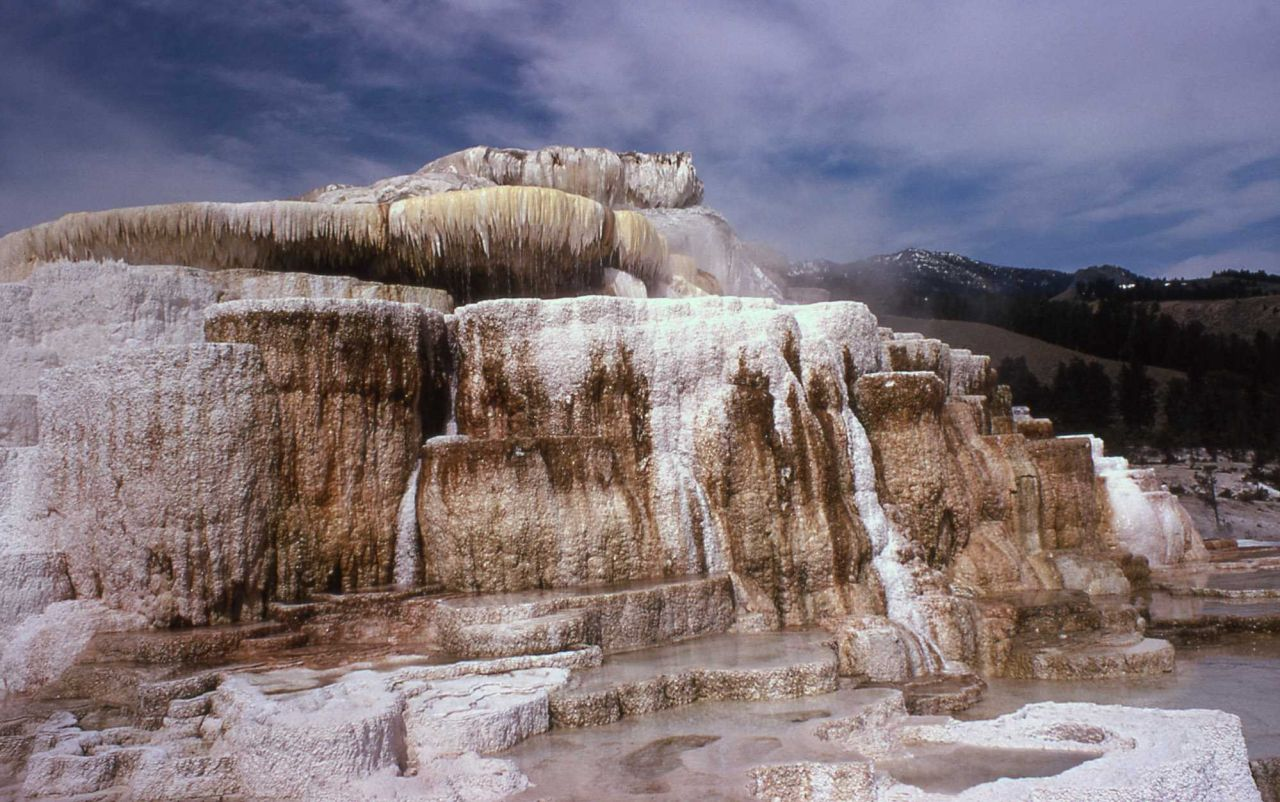 Minerva Springs & Terrace - Mammoth Hot Springs Photo