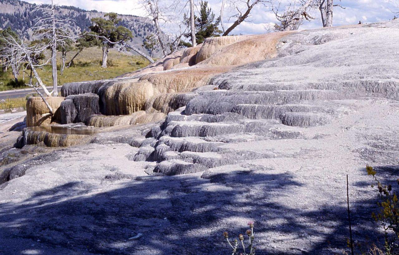 Cavern Spring - Mammoth Hot Springs Photo