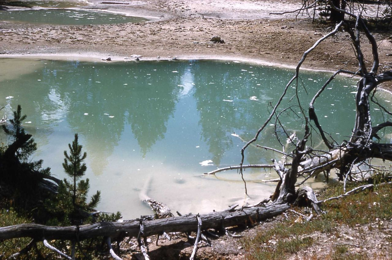 A spring in River Group - Hot Springs, Midway & Lower Geyser Basin Photo