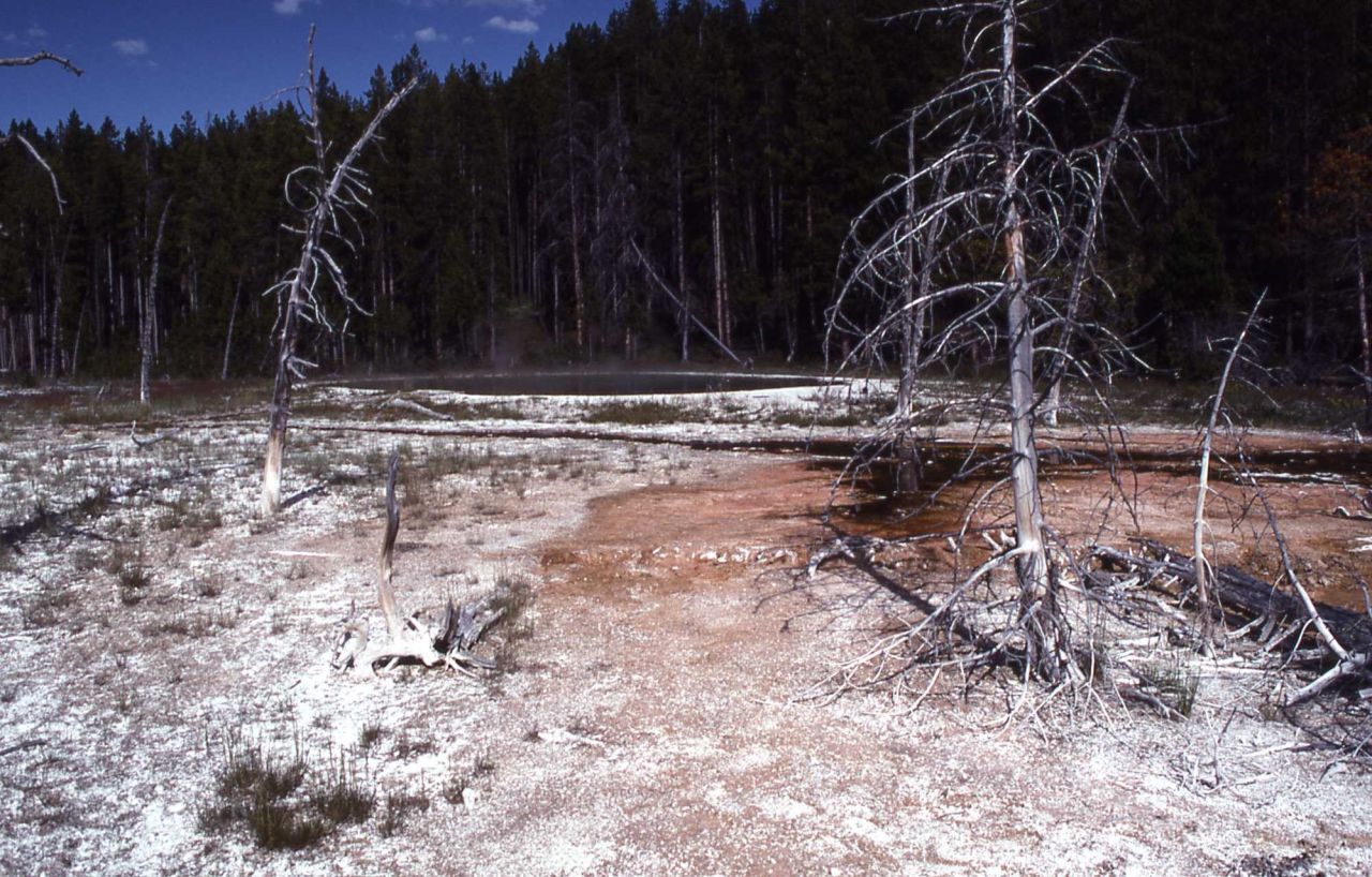 Mushroom Pool along Firehole Lake Drive - Hot Springs, Midway & Lower Geyser Basin Photo