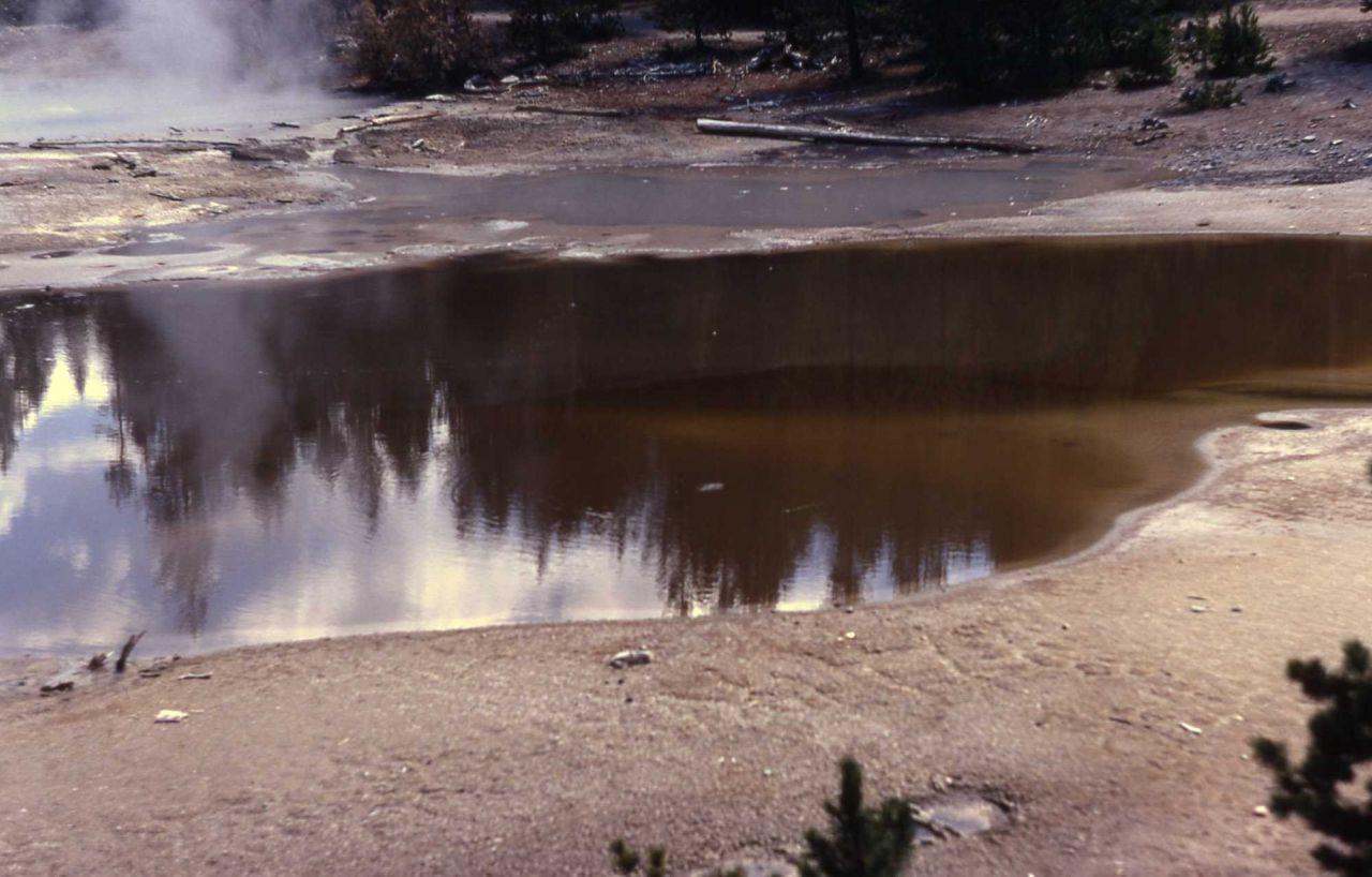 Yellow Mud Pool - Hot Springs, Norris Geyser Basin Photo