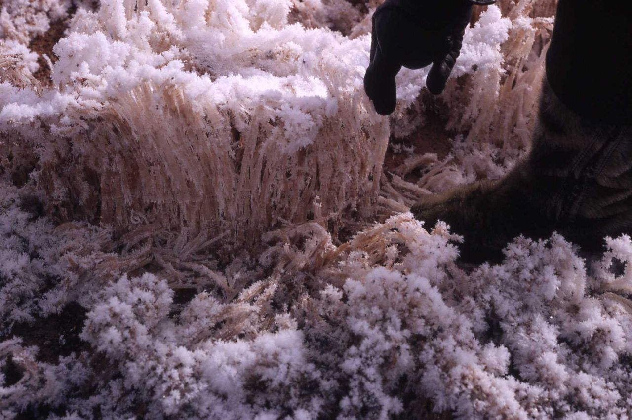 Frost columns rising from warm ground Photo