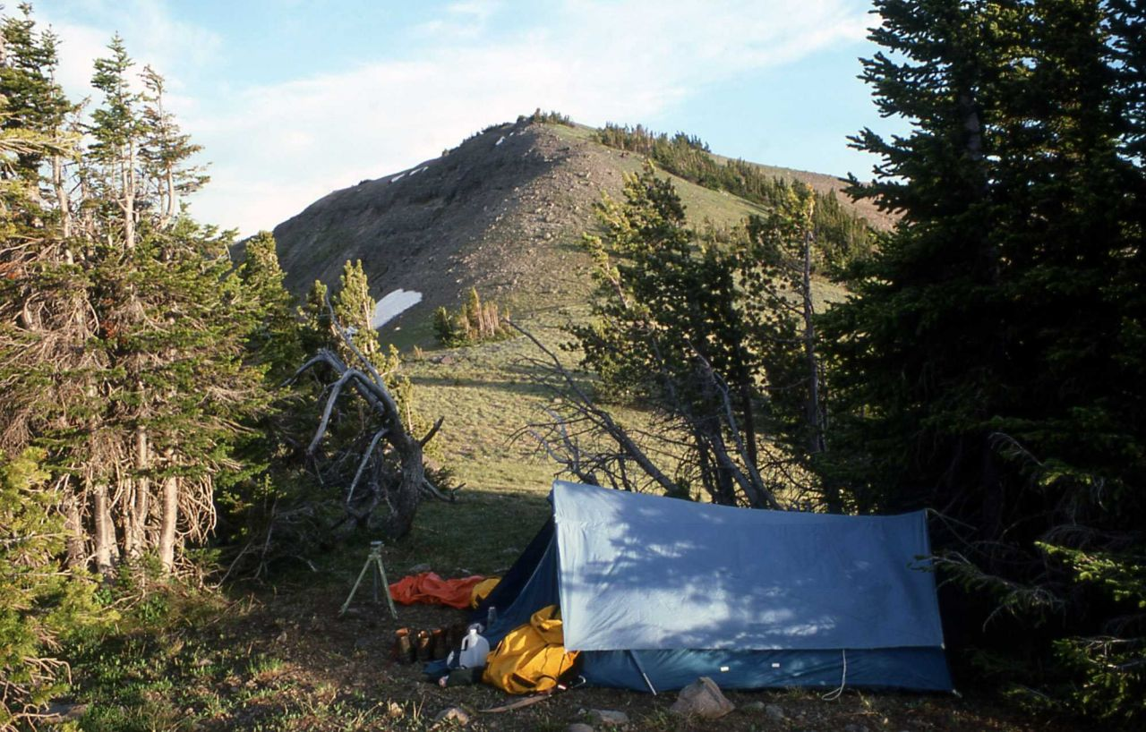 Camp near Mt Langford Photo