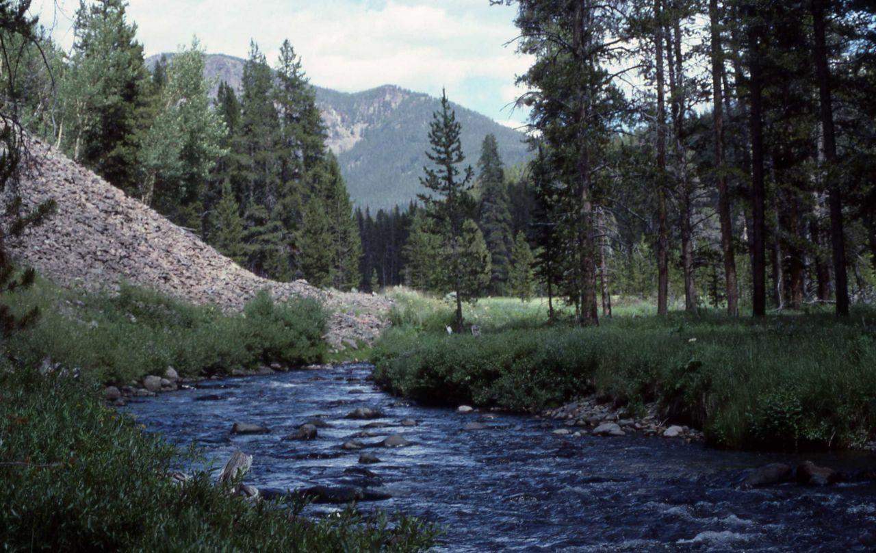 Specimen Creek Photo