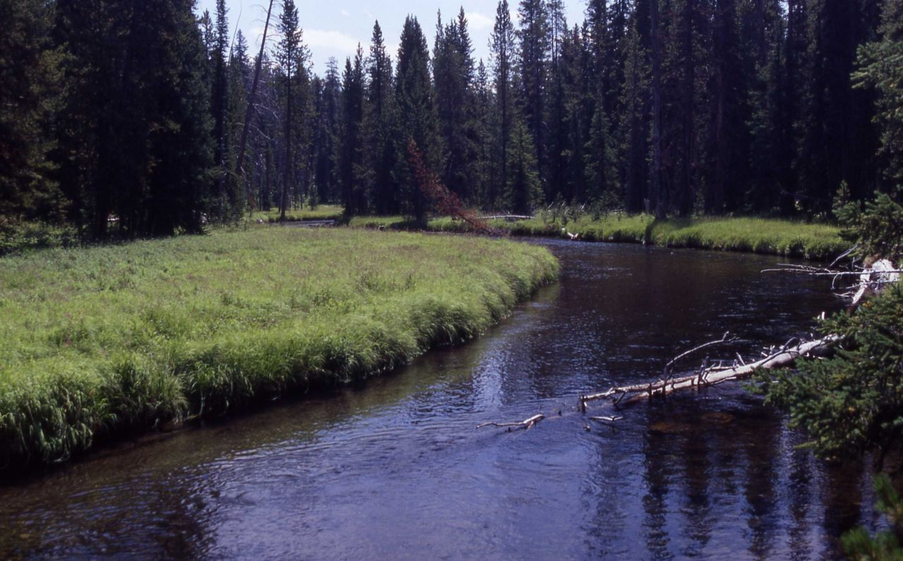 Firehole River along Lone Star trail Photo