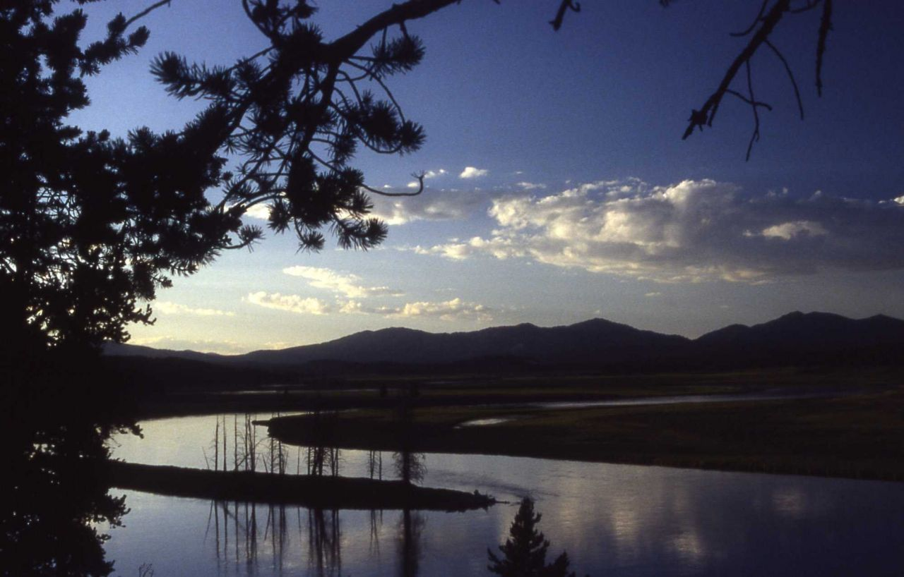 Yellowstone River in Hayden Valley Photo