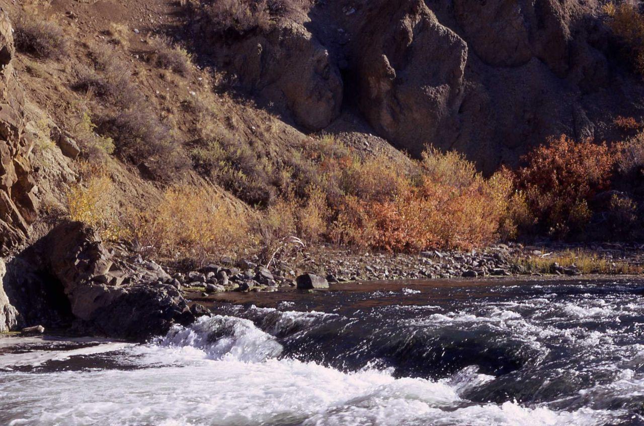 Gardner River Photo